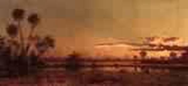 Florida Sunset 1886 1887jpeg